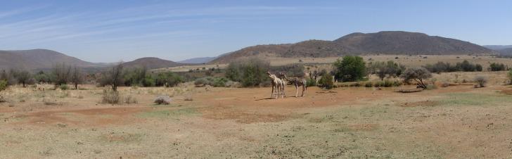 winterzon in zuid afrikahet weer \u0026 klimaat van zuid afrika � bezienswaardigheden top 10 van zuid afrika � beste reisperiode voor een zonvakantie naar zuid afrika